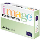 A4 Pale Green Jungle Image Coloraction Copy Paper: 500 Sheets image number 1