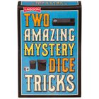 Two Amazing Mystery Dice Tricks image number 1
