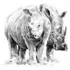 Rhino Pair Sketching Made Easy Set image number 3