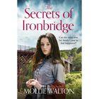 The Secrets of Ironbridge image number 1