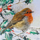 Robin Christmas Cards: Pack Of 10 image number 2