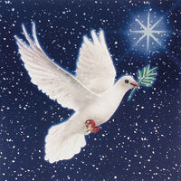 Dove Christmas Cards: Pack Of 10