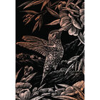 A4 Engraving Art Set: Hummingbird image number 2