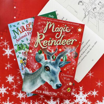 Magic Reindeer: A Christmas Wish image number 2