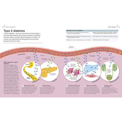 The Diabetes Handbook image number 2