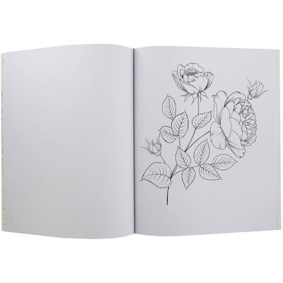Wonders of Nature Colouring Book image number 2
