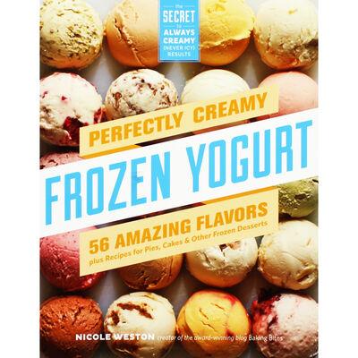 Perfectly Creamy Frozen Yogurt image number 1