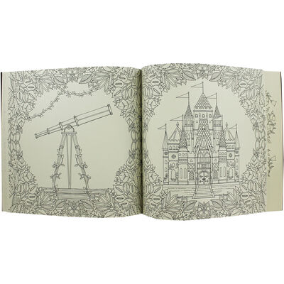 Enchanted Forest: Colouring Book image number 3