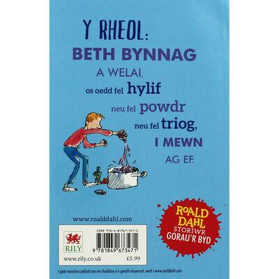 Roald Daul: Moddion Rhyfeddol George image number 3