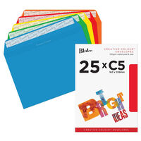 Assorted C5 Wallet Self Seal Envelopes Pack Of 25