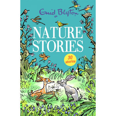 Enid Blyton Stories: 4 Book Collection image number 5