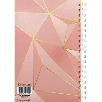 A5 Rose Gold Day a Page 2020-21 Academic Diary image number 3