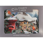 Cancer Research UK Charity Robin Christmas Cards: Pack of 10 image number 1