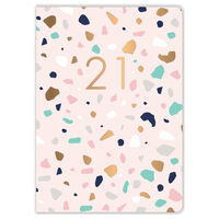 A6 Pink Terrazzo 2021 Day a Page Diary