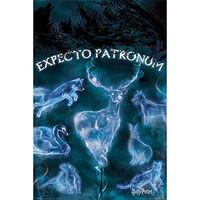 Harry Potter Patronus Wall Poster