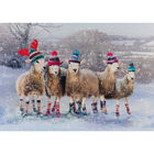 Cancer Research UK Charity Sheep Christmas Cards: Pack of 10 image number 2