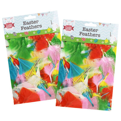Mixed Colour Easter Feathers - 2 Packs image number 1