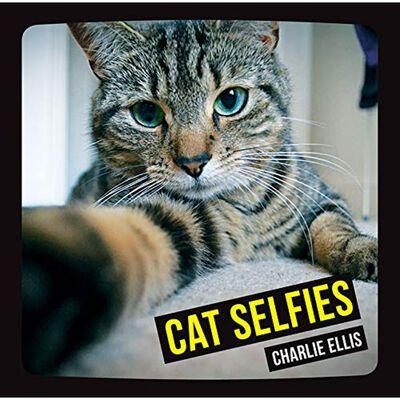 Cat Selfies image number 1