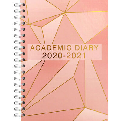 A5 Rose Gold Day a Page 2020-21 Academic Diary image number 1