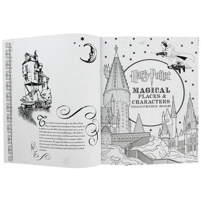 Harry Potter Celebratory Edition Colouring Book image number 2