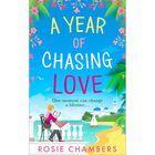 A Year Of Chasing Love image number 1