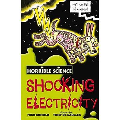 Horrible Science: Shocking Electricity image number 1