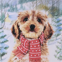 Dog Christmas Cards: Pack Of 10