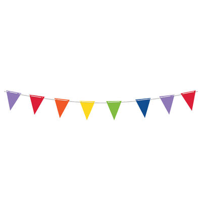 Pennant Rainbow Banner image number 1