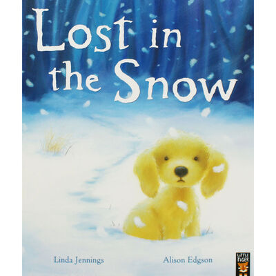 Lost in the Snow image number 1