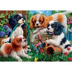 Playful Puppies 500 Piece Jigsaw Puzzle image number 2