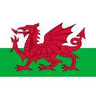 Wales Giant Flag - 3x2ft image number 2