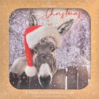Donkey Christmas Cards: Pack Of 10 image number 1
