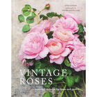 Vintage Roses image number 1