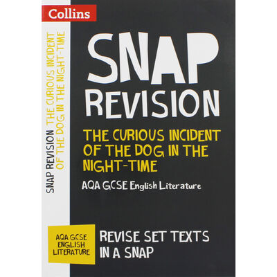 Snap Revision: The Curious Incident of the Dog in the Night-Time image number 1