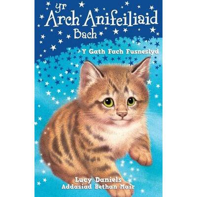 Cyfres yr Arch Anifeiliaid Bach: Y Gath Fach Fusneslyd image number 1
