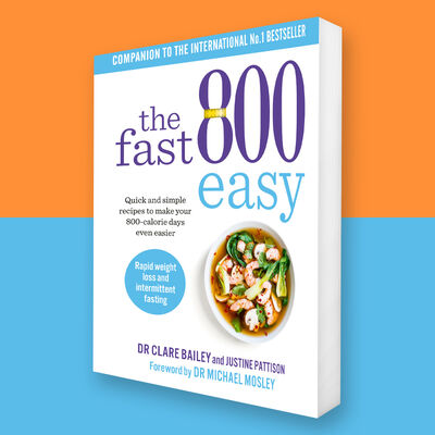 The Fast 800 Easy image number 6