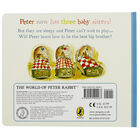 Three Little Bunnies: A Peter Rabbit Tale image number 3