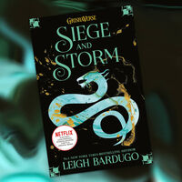 Siege and Storm: Shadow and Bone Book 2