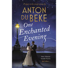 One Enchanted Evening image number 1