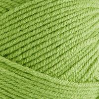 Bonus DK: Fern Green Yarn 100g