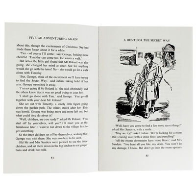 The Famous Five: 10 Book Box Set image number 3