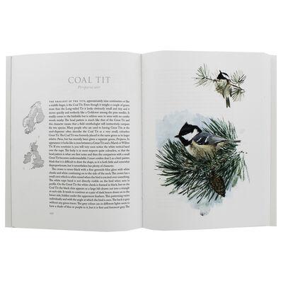 Winter Birds image number 2