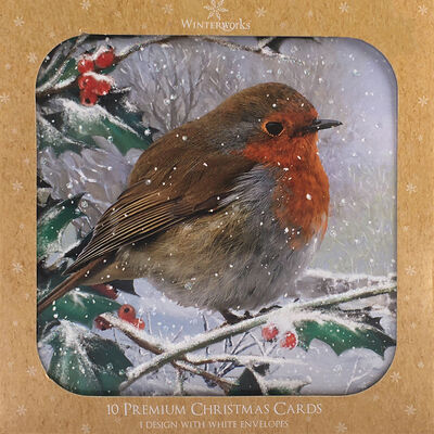 Robin Christmas Cards: Pack Of 10 image number 1