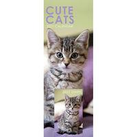 Cute Cats 2021 Slim Calendar and Diary Set