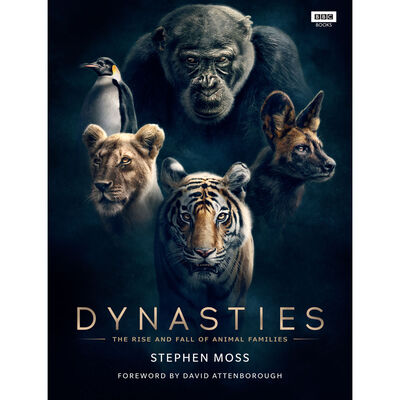 Dynasties: The Rise and Fall of Animal Families image number 1