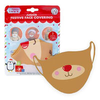 Junior Festive Face Covering: Assorted
