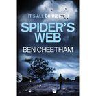 Spider's Web image number 1