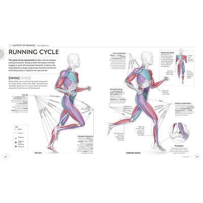 Science of Running image number 2