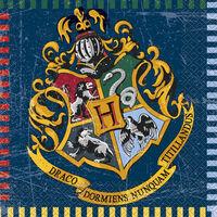 Harry Potter Paper Napkins - 16 Pack