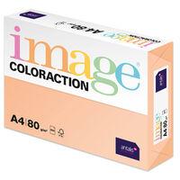 A4 Pale Salmon Savana Image Coloraction Copy Paper: 500 Sheets